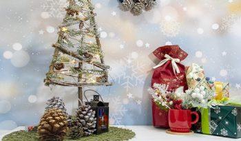 クリスマス用の写真ステージ